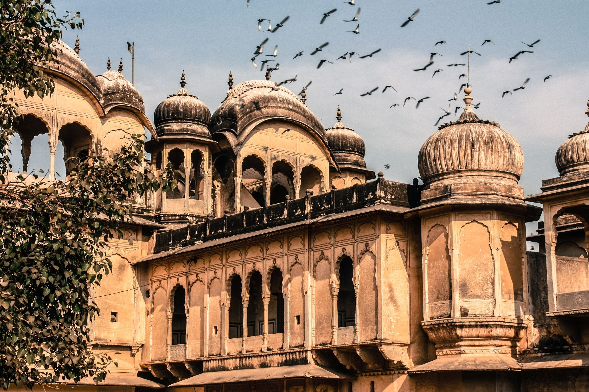All You Need to Know Before Visiting Nawalgarh