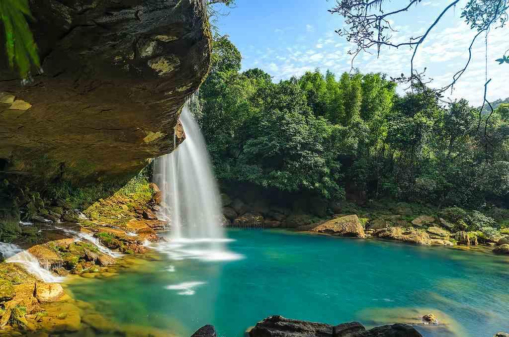 Trip To Lalong Park